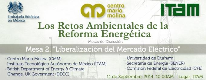 Liberalización del Mercado Eléctrico